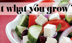 resolutions-eat-what-you-grow_Detailfoto